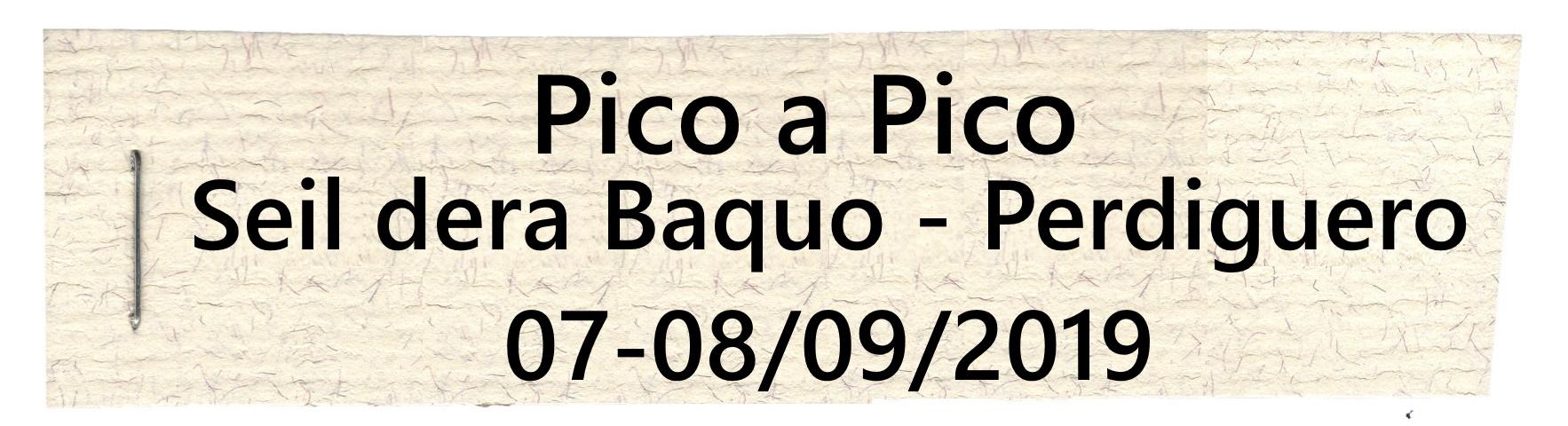 PICO-A-PICO29