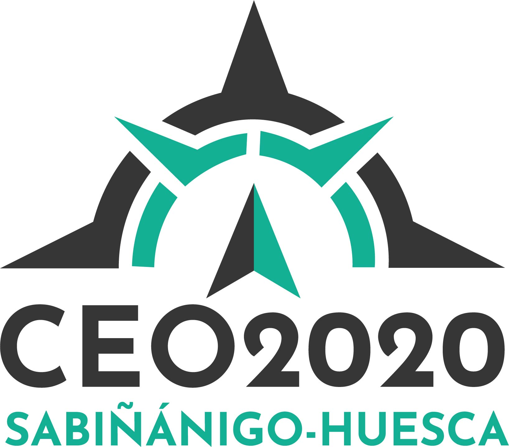 CEO 2020